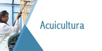Banner Aquicultura