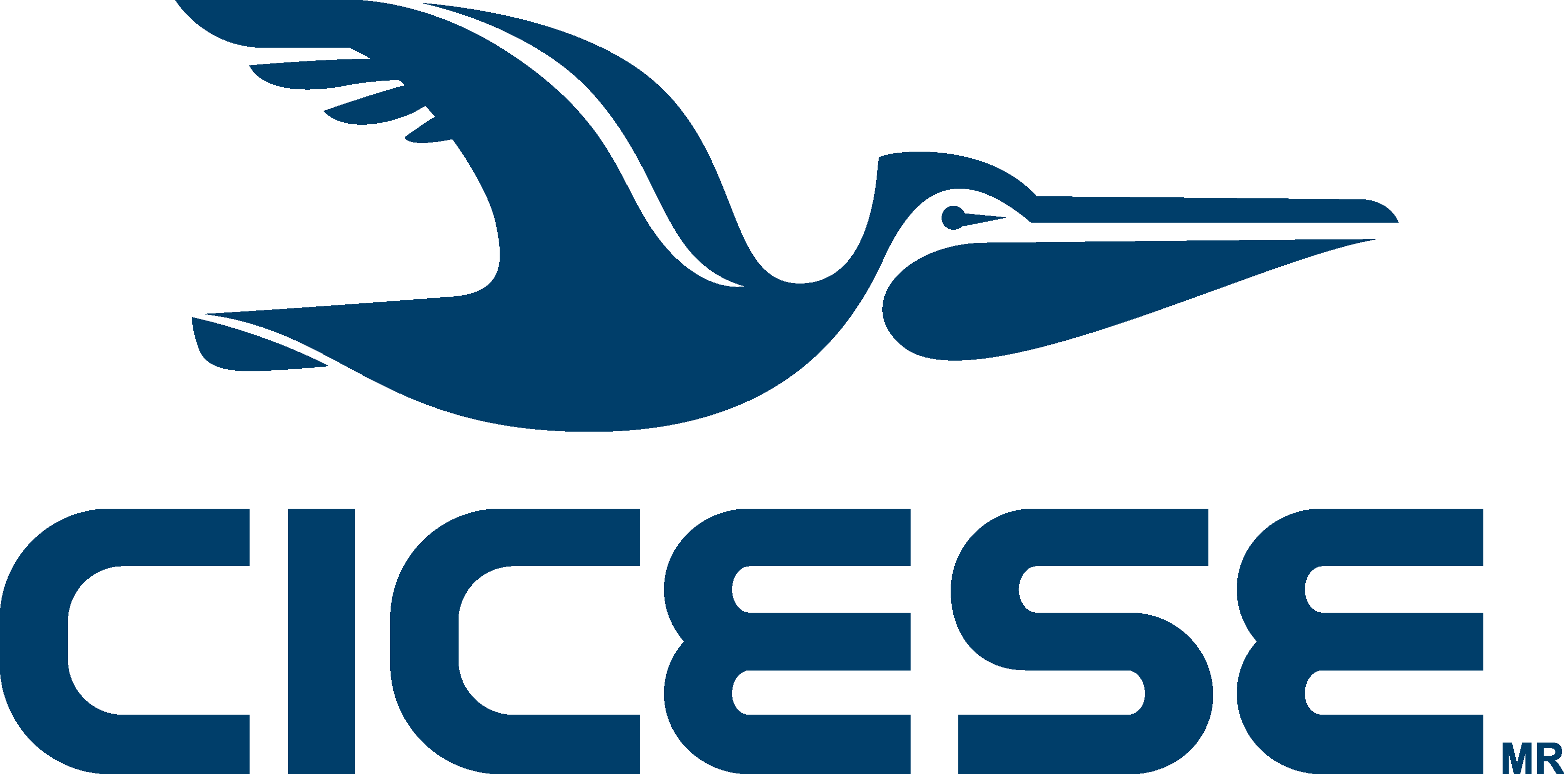 Image result for cicese